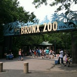 Photo taken at Bronx Zoo by Jennifer K. on 5/27/2012