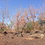 Photo taken at Taman Nasional Baluran (Baluran National Park) by Yunita R. on 9/12/2014