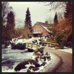 Photo taken at Wildpark Schwarze Berge by Mjam on 3/17/2013
