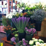 Photo taken at Saville Flowers by leesseung on 10/24/2012