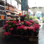 Photo taken at Bunnings Warehouse by Mick on 11/28/2013
