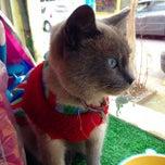 Photo taken at Animadog Pet Shop by Victor C. on 8/16/2014