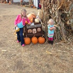 Photo taken at Sleepy Hollow Pumpkin Farm by Perry J. on 10/14/2012