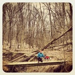 Photo taken at Cleveland Metroparks Brecksville Reservation by Nicki L. on 3/17/2013