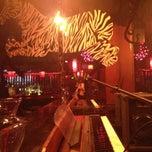 Zebra Lounge - Gold Coast - Chicago, IL