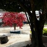 Photo taken at Tùng Sơn Thạch Hoa Viên - Rin Rin Park by Ron N. on 3/14/2015