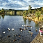 Photo taken at Sognsvann by Dmitry B. on 9/30/2013