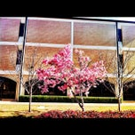 Photo taken at Dallas Theological Seminary by Keeyon U. on 2/24/2012