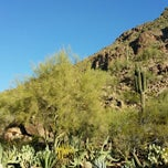 Photo taken at The Canyon Suites at The Phoenician by Peter T. on 3/5/2014