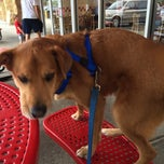 Photo taken at Five Guys by Tiffany P. on 6/8/2014