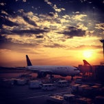 Photo taken at 成田国際空港(Narita International Airport) by Alfred H. on 6/8/2013
