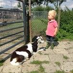 Das Foto wurde bei Kinderboerderij Floreffehoeve von Mark S. am 8/14/2013 aufgenommen