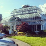 Photo taken at Volunteer Park Conservatory by Keith C. on 6/3/2013