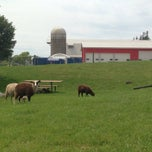 Photo taken at Gale Woods Farm by Ben H. on 7/19/2014
