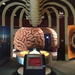 Photo taken at Health Museum of Houston by Luciana M. on 2/2/2013