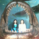 Photo taken at Museo de Historia Natural Ecatepec by Grey V. on 7/16/2013