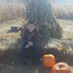 Photo taken at Sleepy Hollow Pumpkin Farm by Wendelina on 10/19/2014