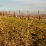 Photo taken at Eichkogel by SMR on 1/12/2014