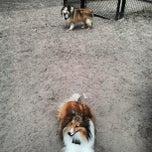 Photo taken at Tamarac Dog Park by Randall M. on 3/31/2013