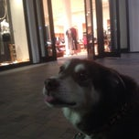 Photo taken at J.Crew by Tawmis L. on 10/9/2013