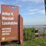 Photo taken at Arthur R. Marshall Loxahatchee National Wildlife Refuge by Crist J. on 6/24/2014