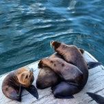 Photo taken at Santa Cruz Wharf by Roger L. on 9/17/2012