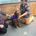 Photo taken at Westside Animal Clinic by Jennifer D. on 11/28/2014