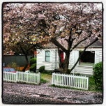 Photo taken at Maple Leaf Neighborhood by Th_Aviator on 3/25/2015
