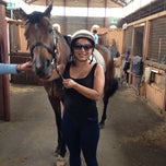 Photo taken at Centennial Park Equestrian Centre by Darren W. on 12/15/2013
