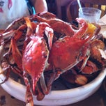 Photo taken at Mike's Crabhouse by Michael J. on 6/8/2013