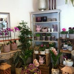 Photo taken at Floristería Brisa by Nasim A. on 11/6/2013