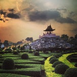 Photo taken at สวนนงนุช (Nong Nooch Garden & Resort) by Jed K. on 3/8/2013