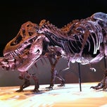 Photo taken at Houston Museum of Natural Science by Karin H. on 11/15/2012