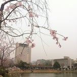 Photo taken at 건국대학교 (Konkuk University) by websarang on 4/13/2012