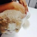 Photo taken at โรงพยาบาลสัตว์สุวรรณชาด (Suwanchard Pet Hospital) by Pattarakan P. on 4/18/2015