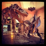 Photo taken at Natural History Museum of Los Angeles County by Alexandra on 8/13/2012