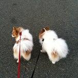 Photo taken at Sun Vista Park by Celine B. on 12/11/2011