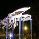 Photo taken at Ossada Baleia Jubarte by Marcelo S. on 1/14/2012