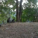 Photo taken at Hutan Tanjung pusuk by Fuad Lagi B. on 9/6/2011