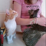 Photo taken at Michigan Humane Society by Jennifer H. on 9/14/2011