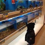 Photo taken at PetSmart by Michelle B. on 1/8/2012