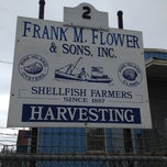 Photo taken at Frank M. Flower & Sons Inc. by Greg M. on 5/24/2012