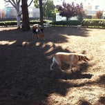 Photo taken at Dog Park by Christopher T. on 8/21/2011