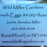 Photo taken at Wild Miller Gardens by Walter E. on 8/28/2012