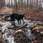 Photo taken at Springside Park by KenZ-B on 12/22/2011