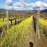 Photo taken at Alexander Valley by Tommy P. on 2/11/2012
