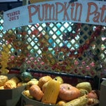 Photo taken at Trader Joe's by Ty H. on 10/28/2011