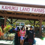 Photo taken at Kahuku Land Farms Fruit Stand by Victor H. on 5/13/2012
