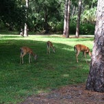 Photo taken at John Chesnut Park by Shawn M. on 8/8/2012