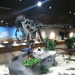 Photo taken at Dakota Dinosaur Museum by Matt F. on 8/8/2012